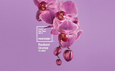 Pantone Color For 2014
