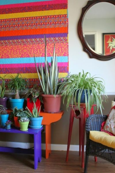 House Plants: Lots Of Green Changes Going On