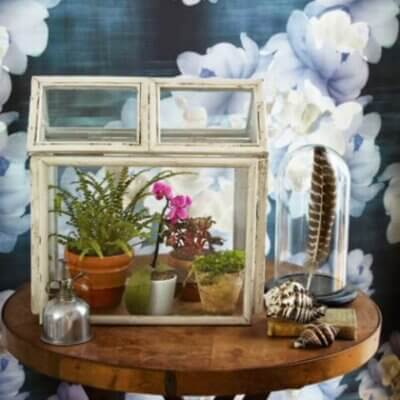 Ten Fun Terrariums To Make