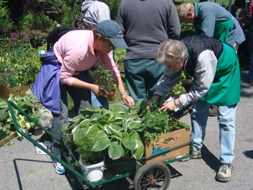 10 Frugal Tips To Start A Garden