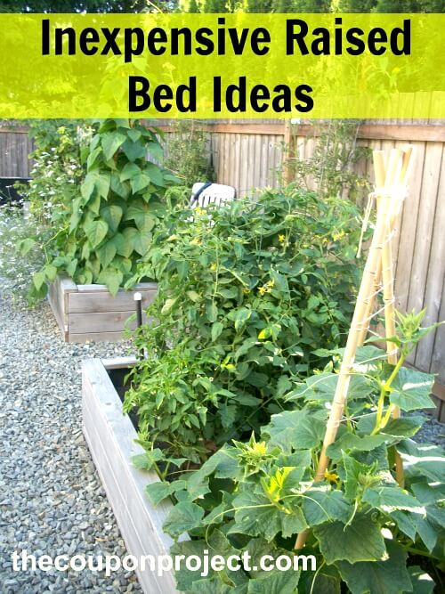 Why I Prefer Raised Bed Gardening Cozy Little House
