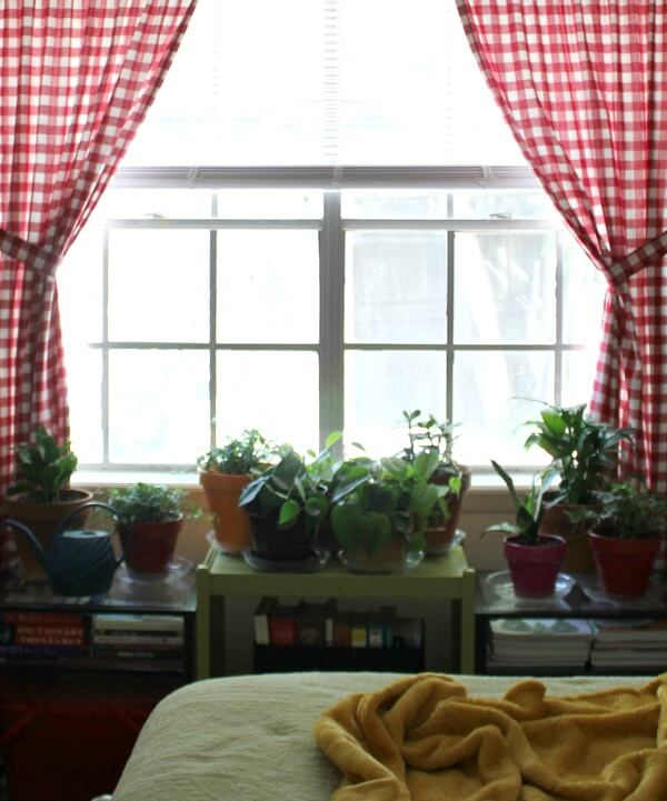 proper humidity for house plants cozy little house. Black Bedroom Furniture Sets. Home Design Ideas