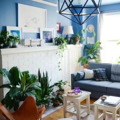 Small San Francisco Apartment Full Of Greenery
