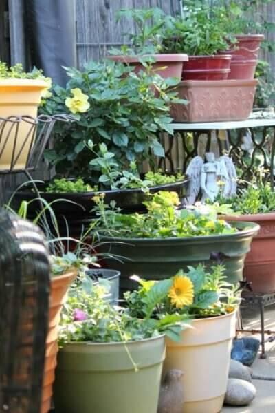 How To Design A Small Space Garden
