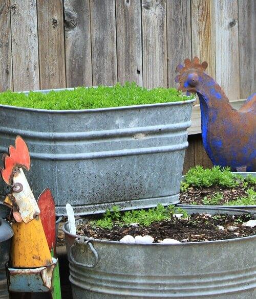 galvanized garden