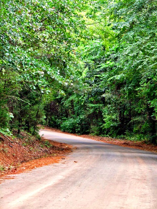Curving country road