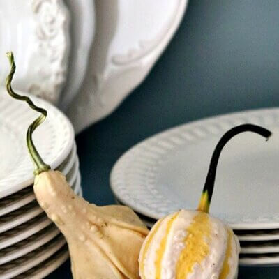 Fall gourds with white dishes