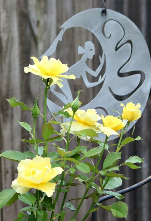 Yellow roses against a woman sculpture