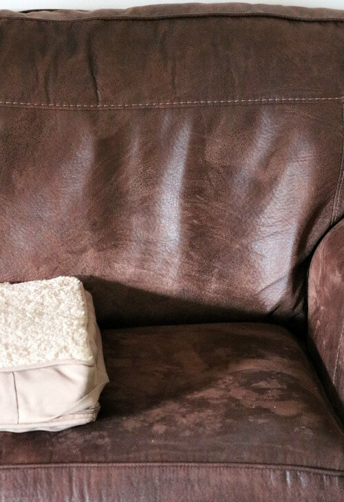 My couch with pet bed