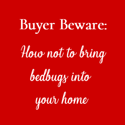 How Not To Bring Bed Bugs Into Your Home
