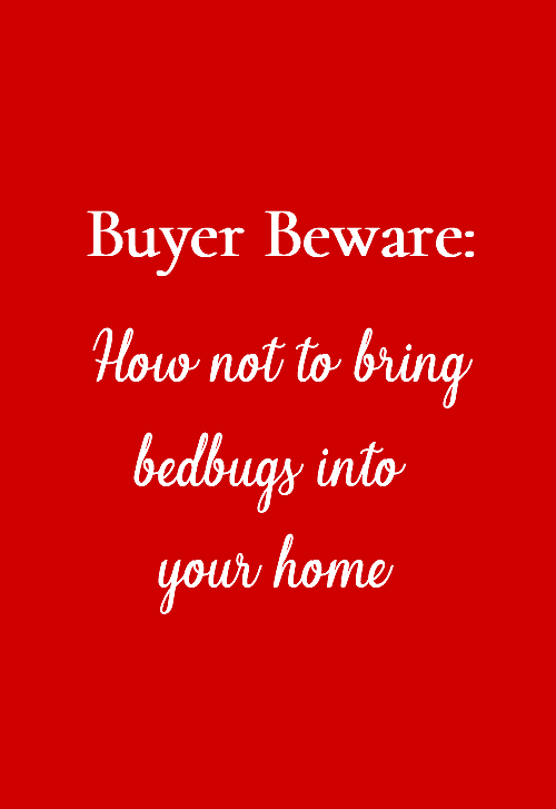 How Not Bring Bed Bugs Home