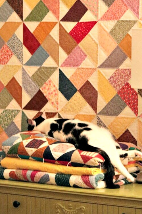 ivy on quilt stack