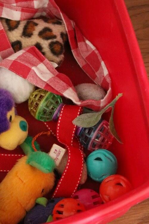 Ivy's toy box