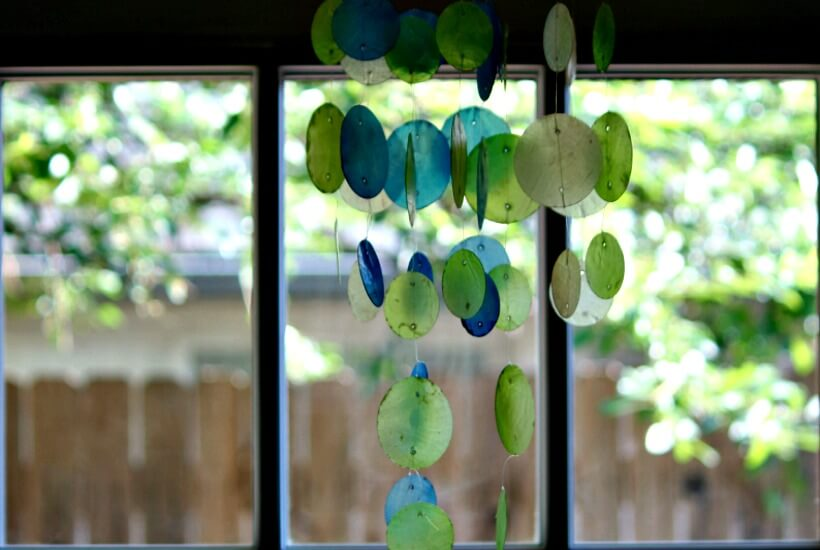 Purifying The Air Naturally (Not Just With Plants)