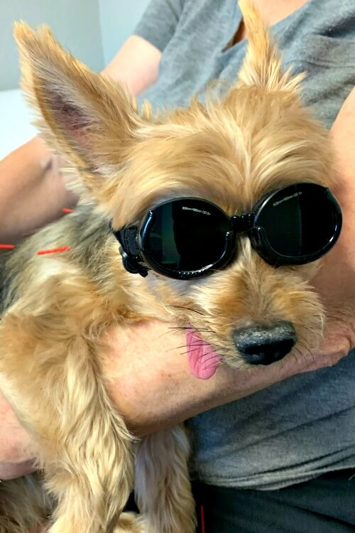 Charlie & His Cool Laser Treatment Glasses