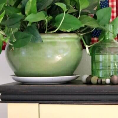 Ivy Snooping & Organizing Craft Supplies