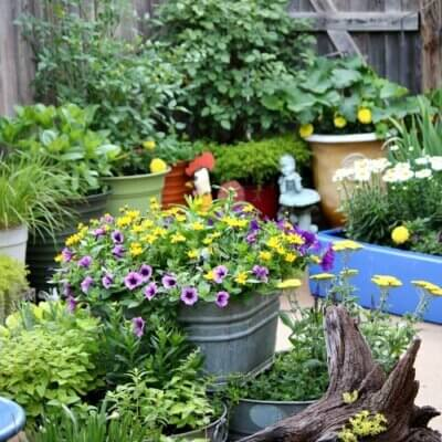 How I Design An  Outdoor Space