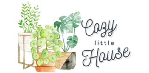 Cozy Little House