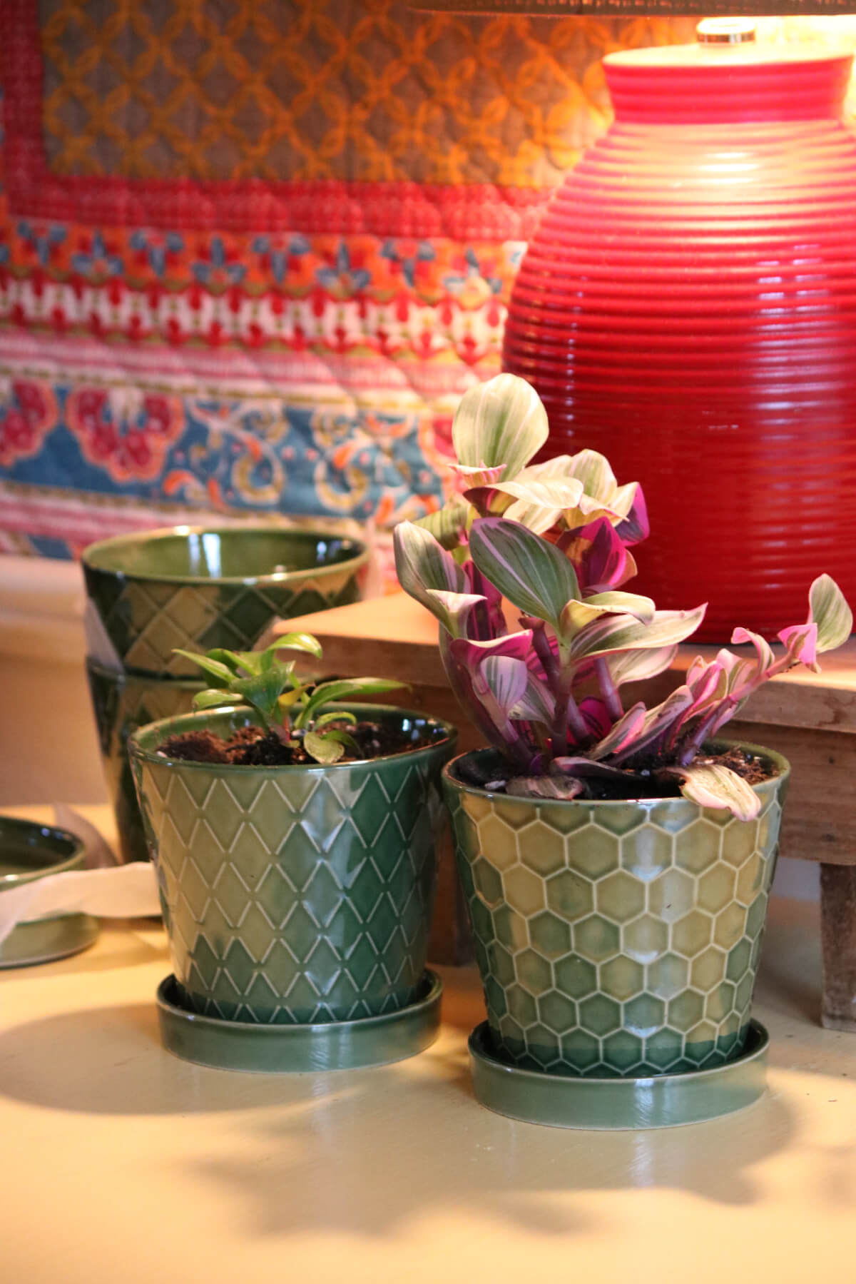 Pretty Plant Pots For A Great Price