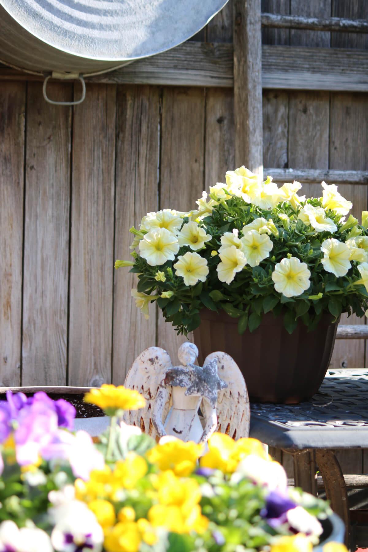 7 Mental Health Benefits Of Gardening