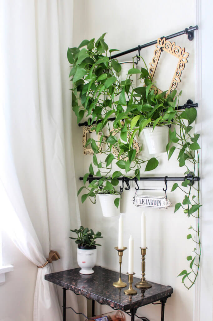 Black metal hangers on the wall holding house plants