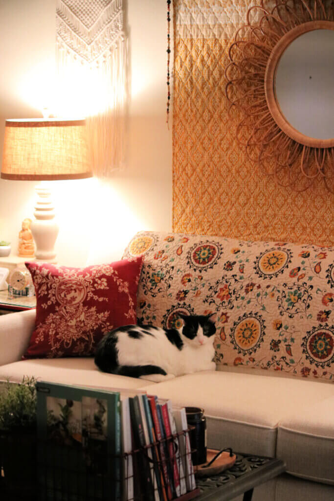 My cat Ivy on the couch where I'm showing my new couch pillow covers and a rug in the living room.