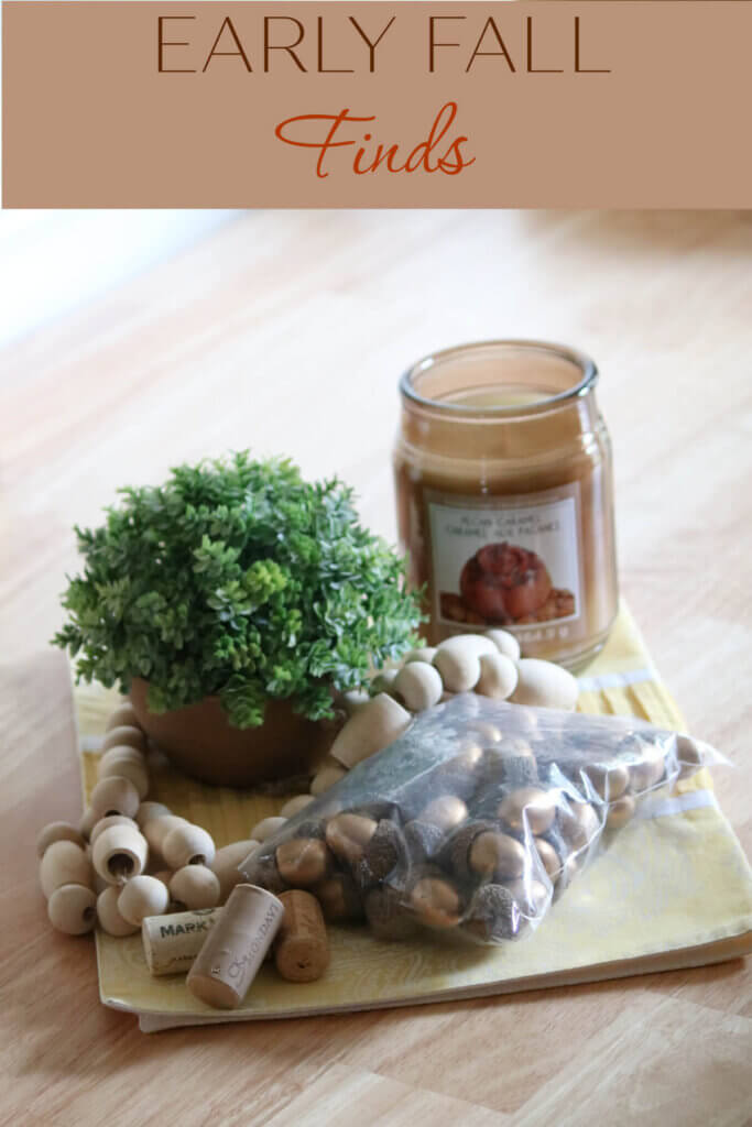 Early fall finds of faux acorns I ordered for fillers
